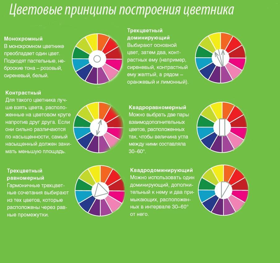 Цветовые гармонии в дизайне
