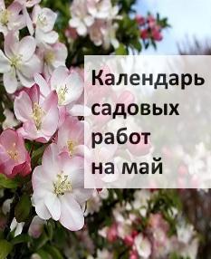 Календарь садовых работ на май