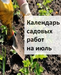 Календарь садовых работ на июль