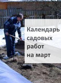 Календарь садовых работ на март