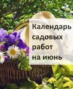 Календарь садовых работ на июнь